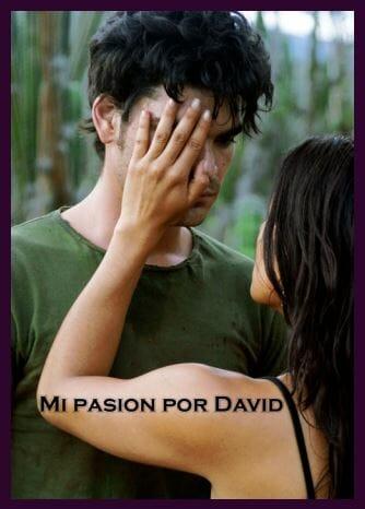 Mi pasión por David película colombiana afiche / Mi pasión por David colombian movie poster
